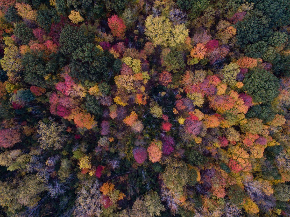8 Ways to Set the Fall Mood