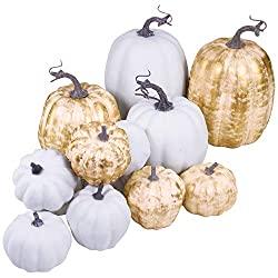 14 assorted fall home decor pumpkins